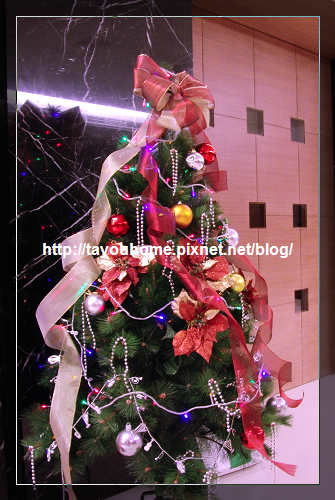 2008 耶誕樹 特寫.jpg
