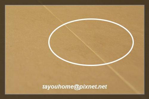 淋浴區地板特寫1.jpg
