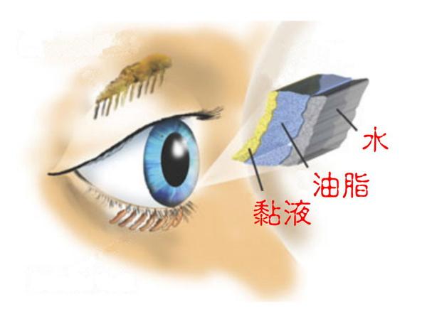 「乾眼症」的圖片搜尋結果