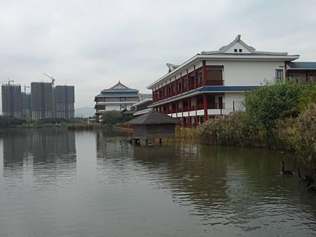 五緣灣濕地公園04