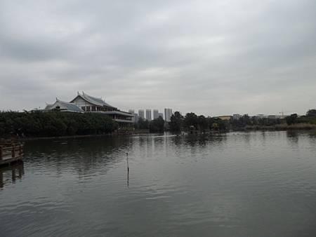 五緣灣濕地公園01