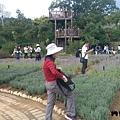 內雙溪自然公園(004) .jpg