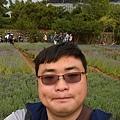 內雙溪自然公園(006) .jpg