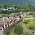 內雙溪自然公園(011) .jpg