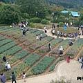 內雙溪自然公園(010) .jpg