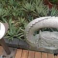內雙溪自然公園(034) .jpg
