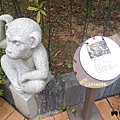 內雙溪自然公園(043) .jpg
