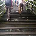 內雙溪自然公園(051) .jpg
