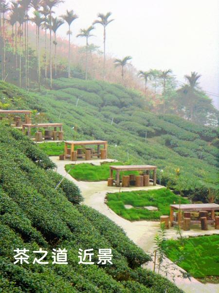 茶之道1.jpg