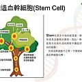 認識造血幹細胞_頁面_01.png