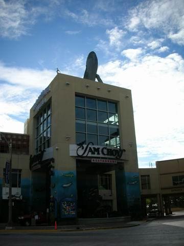 樓頂有鯨魚