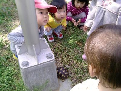 2012年3月活動 (47)