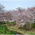 奈良2.jpg