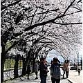 大阪33.jpg