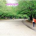 上野公園9.jpg