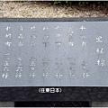 日本橋16.jpg