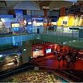博物館40.jpg