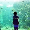 水族館20.jpg