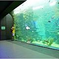 水族館19.jpg