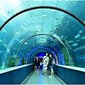 水族館21.jpg