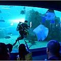 水族館25.jpg