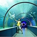 水族館23.jpg