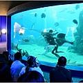 水族館30.jpg