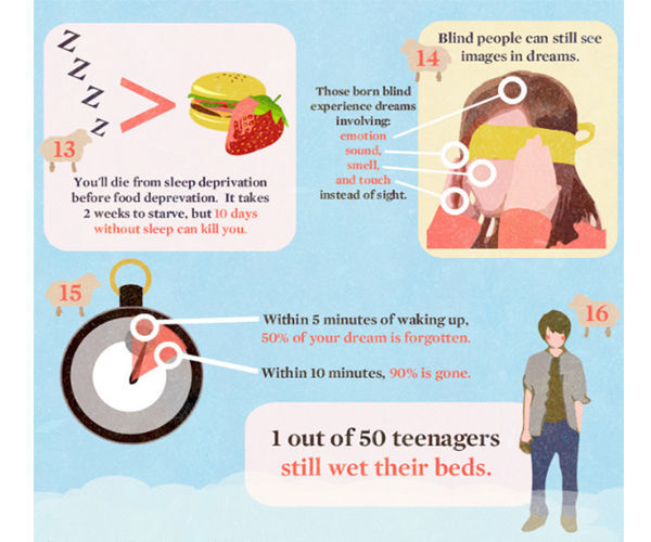 16-things-you-didnt-know-about-sleep-201010-6.jpg