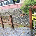 竹子湖遊_1142.JPG