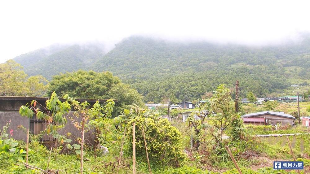 竹子湖遊_2285.JPG