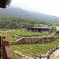 竹子湖遊_2387.JPG