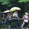 竹子湖遊_3245.JPG
