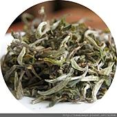 1. 乾茶.JPG