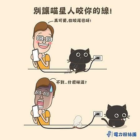 0905貓星人咬電線