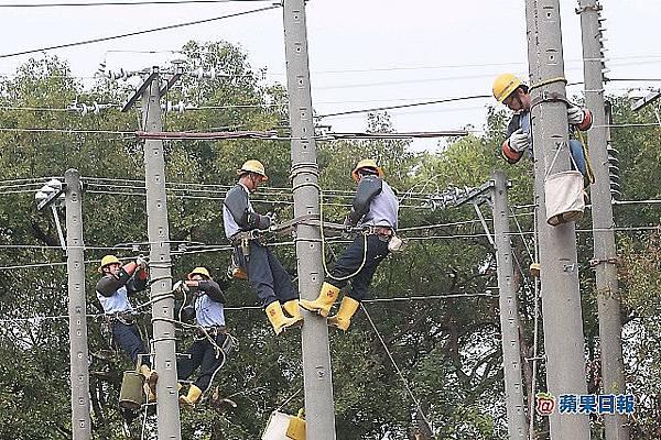 台電舉辦技能競賽,參加員工爬上電線桿作業。楊適吾攝