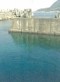 台電來電之旅深澳發電廠~溫排水養殖區