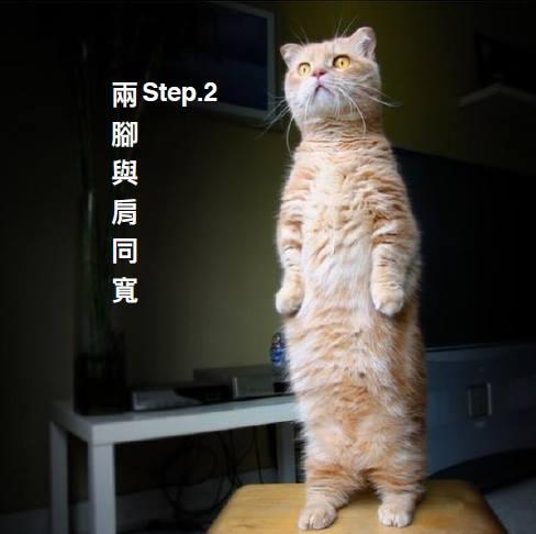 貓氣功2.jpg
