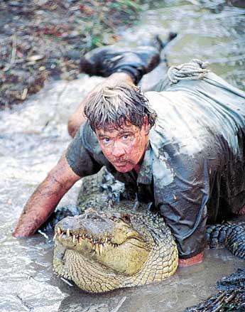 Steve Irwin 3.jpg