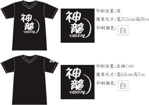 example2Tshirt.jpg