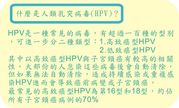 HPV11