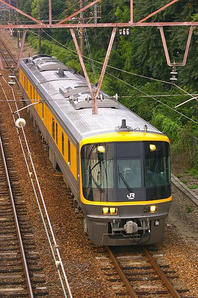 IMGP7967.JPG