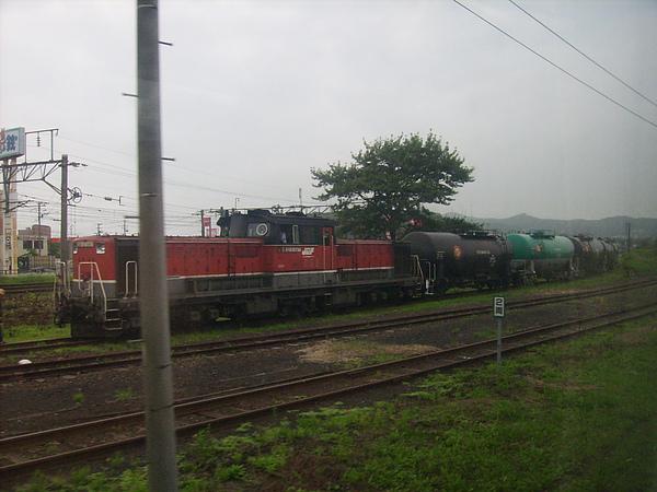 DSCI4013.JPG