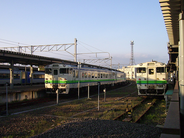 DSCI4109.JPG