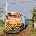 DSCI0720.JPG