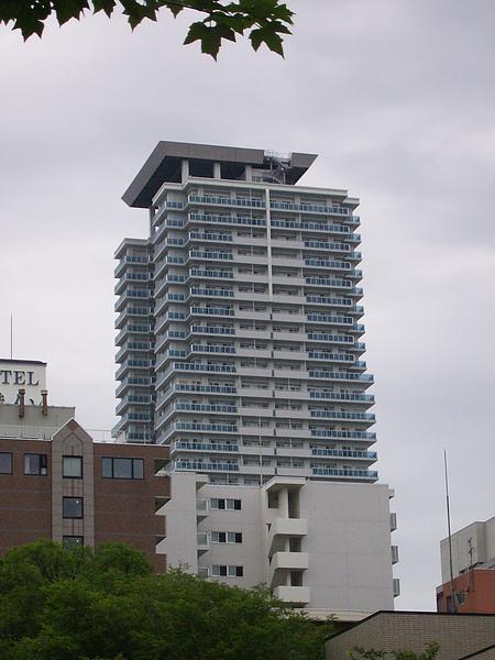 DSCI3810.JPG