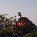 DSCI0838.JPG