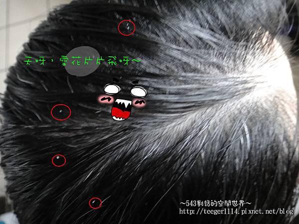 髮昂8.jpg