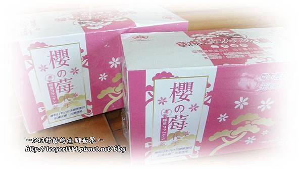 櫻之莓1.jpg