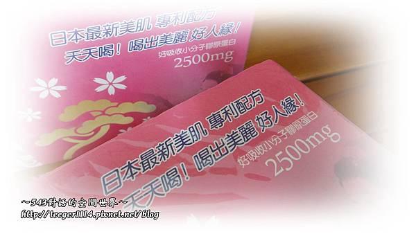 櫻之莓2.jpg