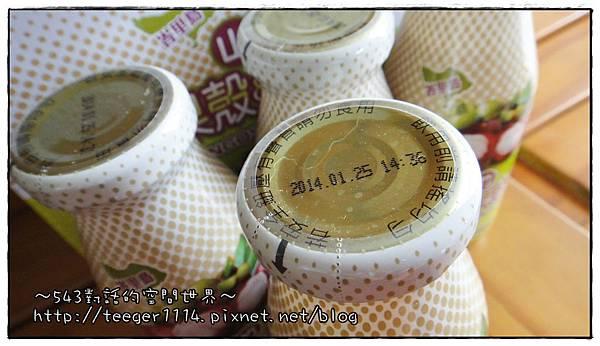山竹果汁7